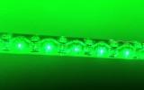 whipzilla-green
